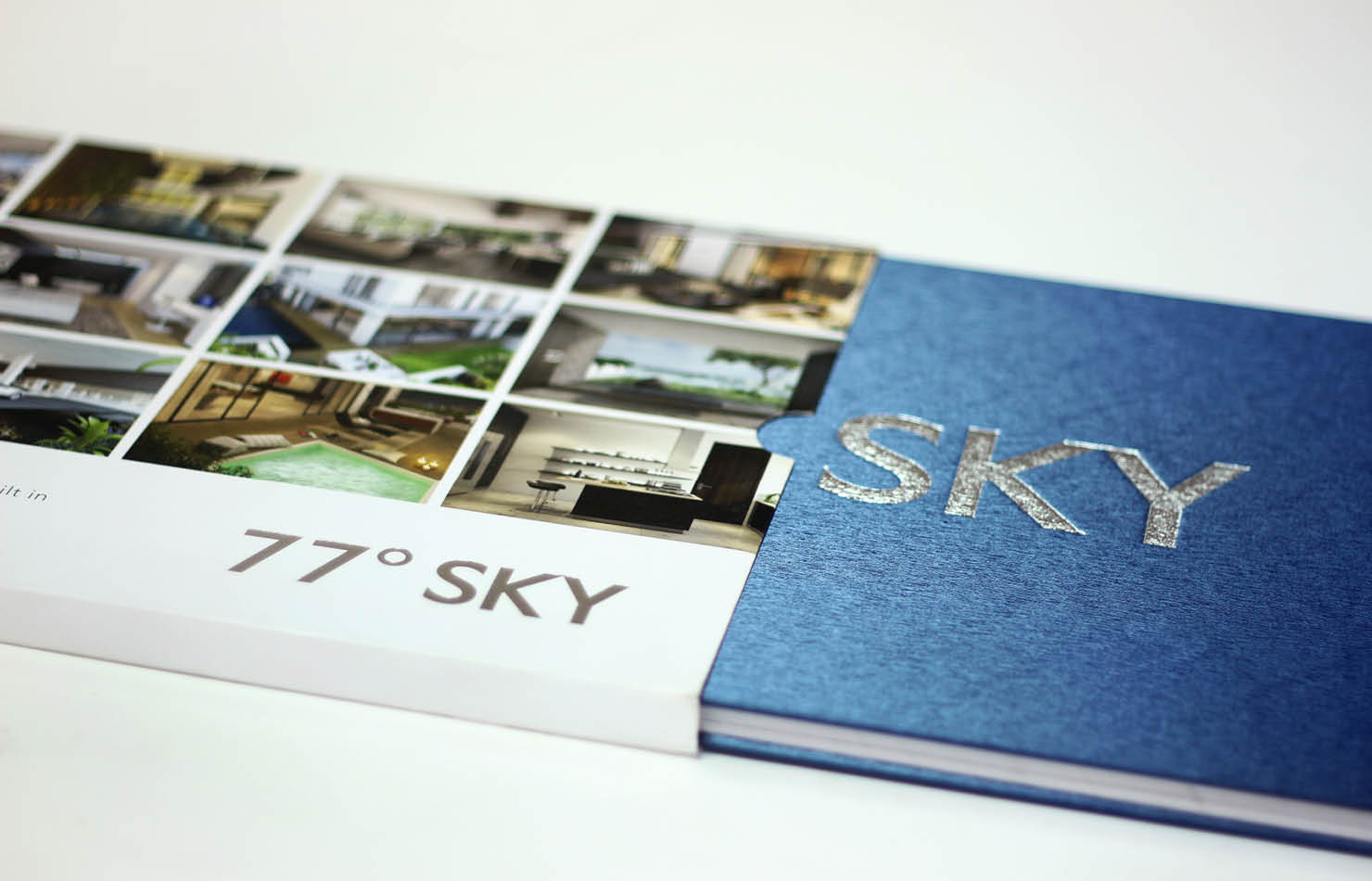 Real Estate DivyaSree 77 Sky Rezonant Design Brochure Impact 01