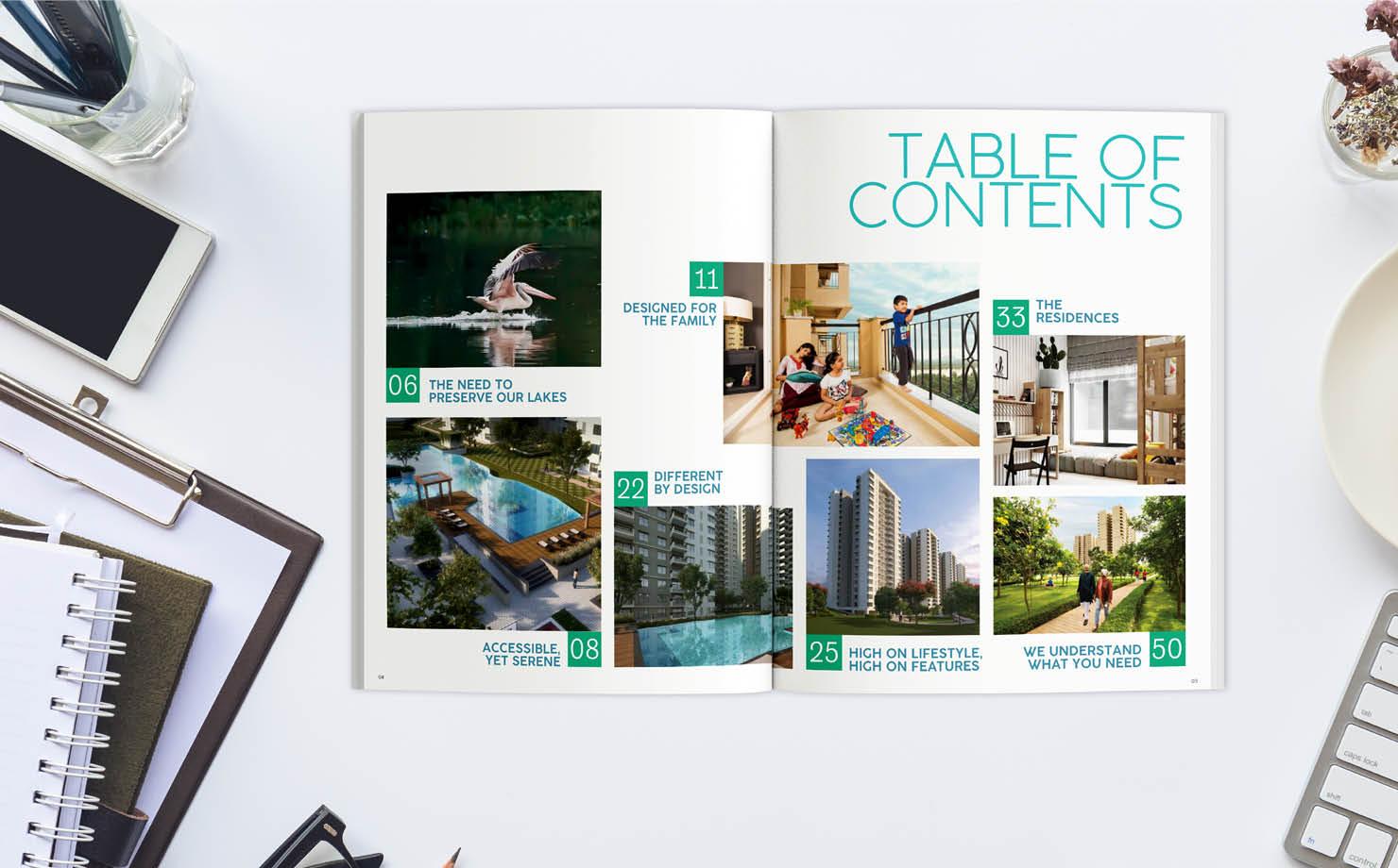 magazine brochure